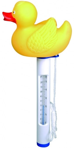 Pool-Thermometer-Ente